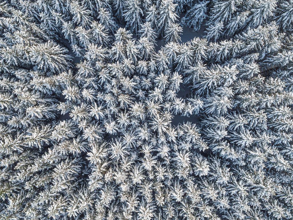 Lumekuninganna kleidimuster