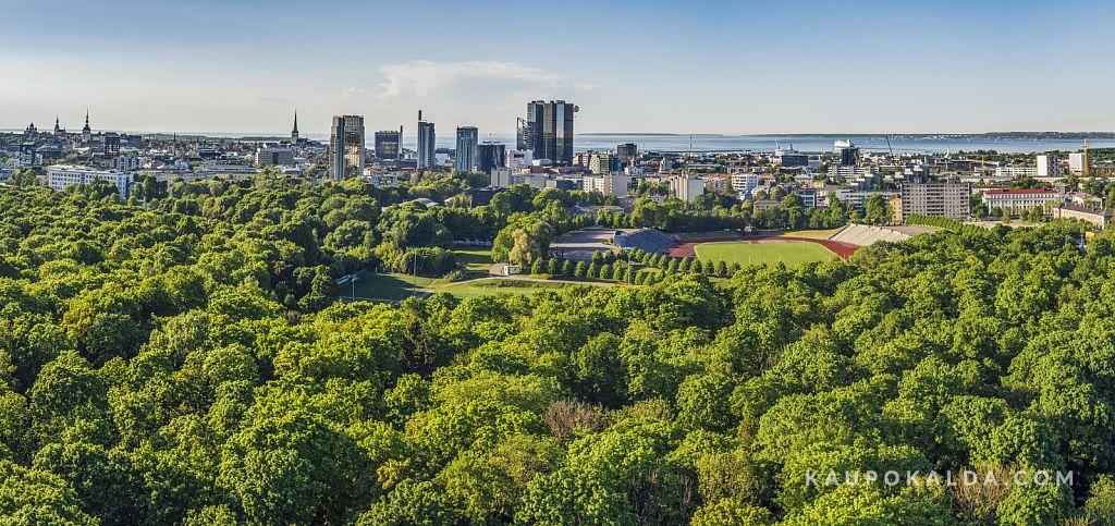 Roheline Tallinn